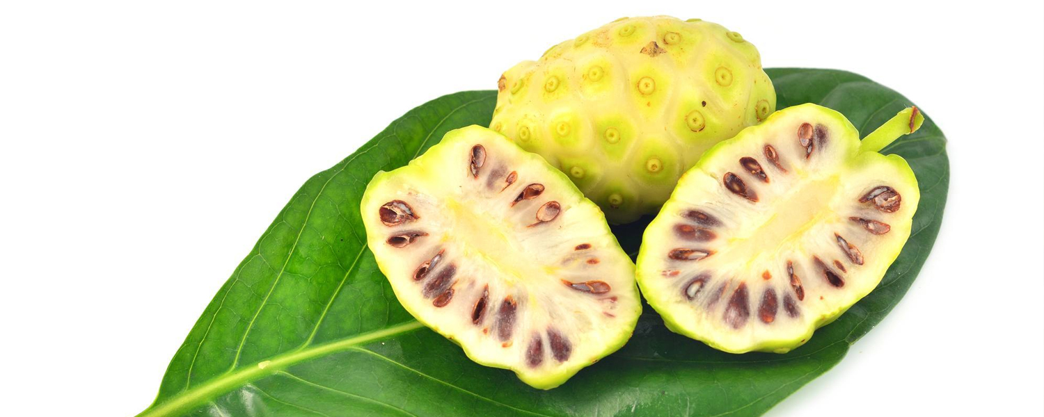 Are Noni Products Worth Spending Money On