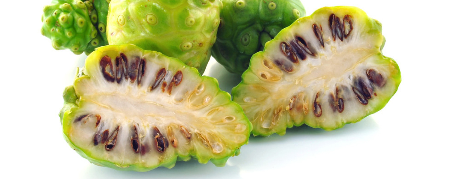 Points to Be Pondered Before Consuming Noni Products